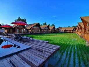 Rice Farm Villa (นาในเมือง)